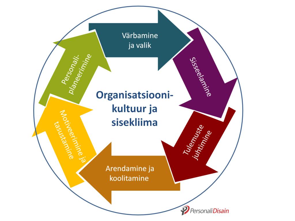 personalijuhtimise osad, personalijuhtimine, talentide juhtimise protsess