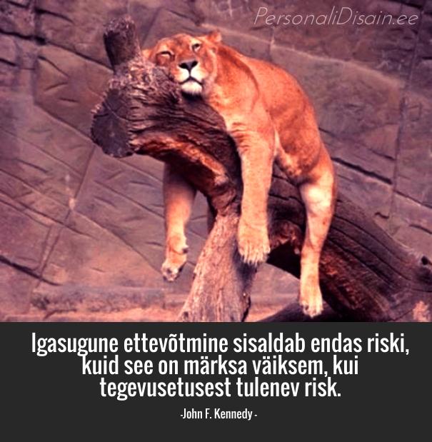 Igasugune ettevõtmine sisaldab endas riski, kuid see on märks väiksem, kui tegevusetusest tulenev risk_personalidisain.ee